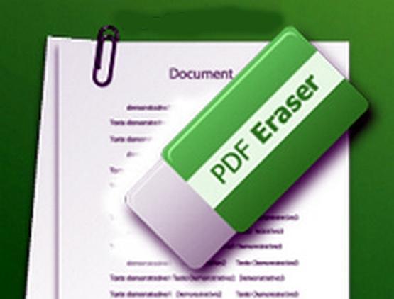 PDF-Eraser-Pro-Portable-Direct-Link-Download_1