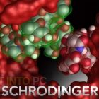 Schrodinger Suites 2017 Free Download